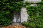 Altes Haus in Zingst