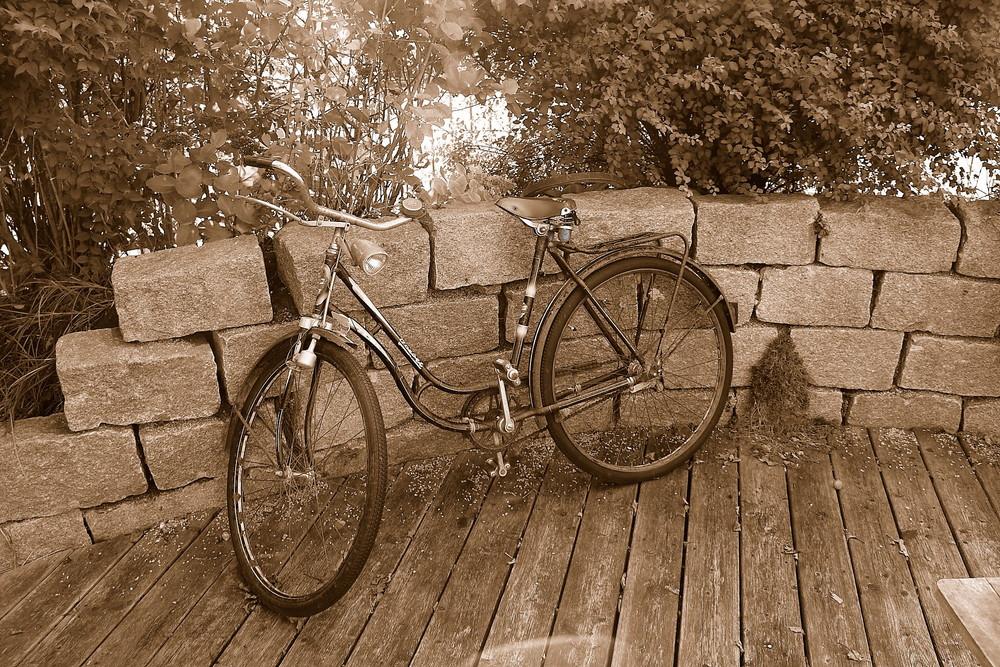 Altes Rad in Sepia