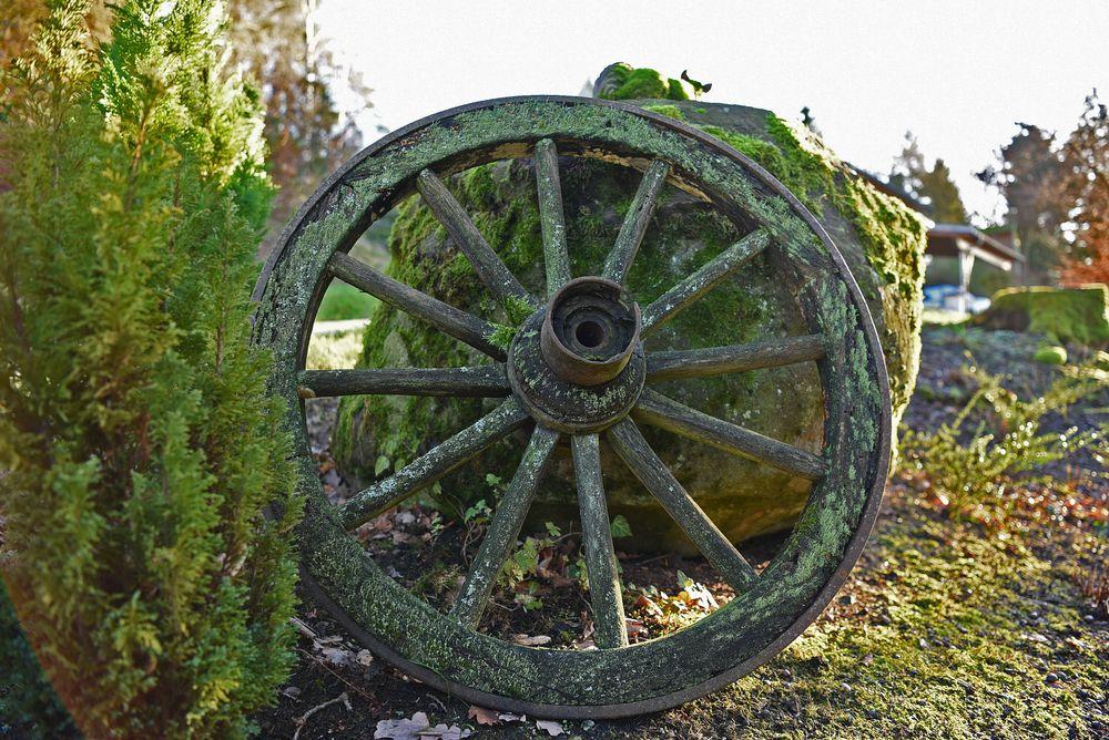 Altes Wagenrad als Gartendekoration