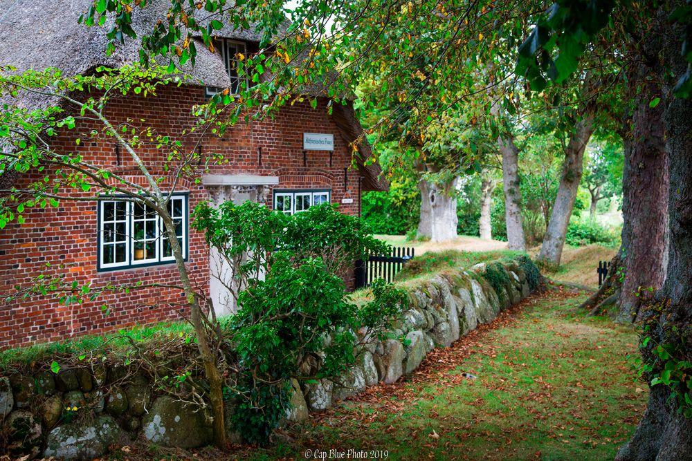 Altfriesisches Haus mit alten Bäumen