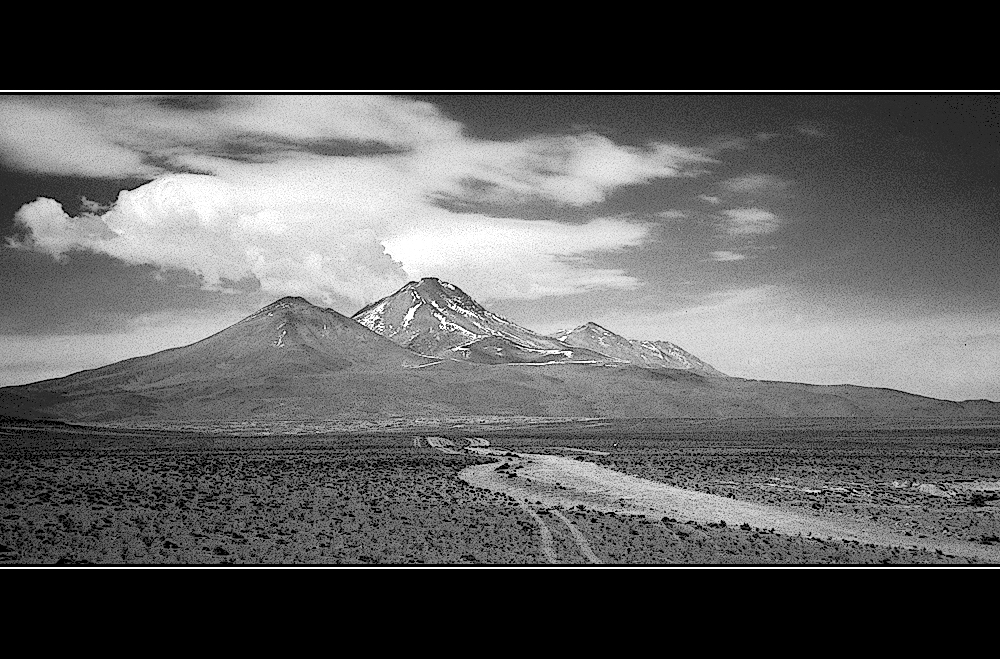- altiplano boliviano -