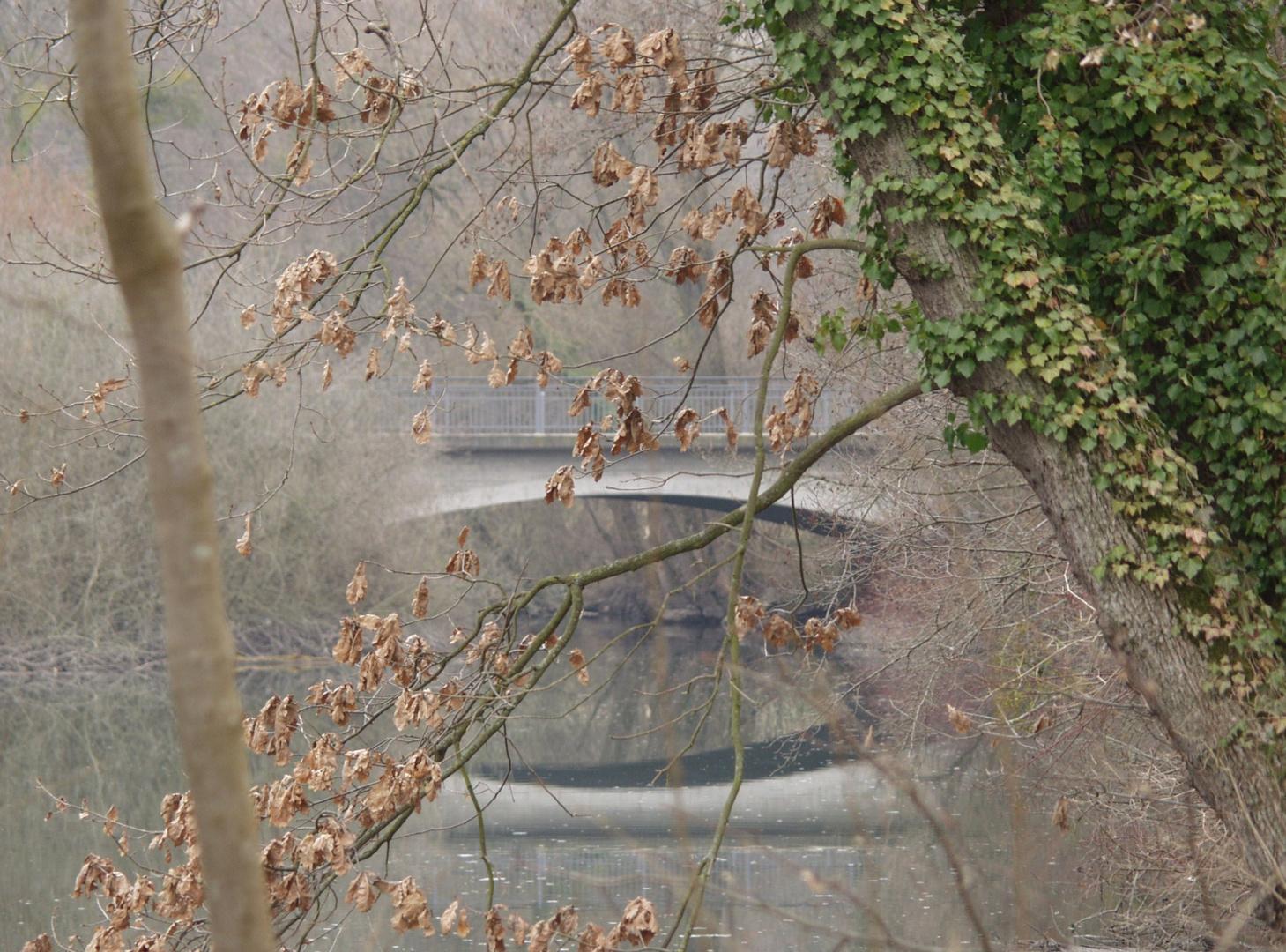 Altrhein bei Karlsruhe