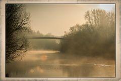Altrhein im Nebel