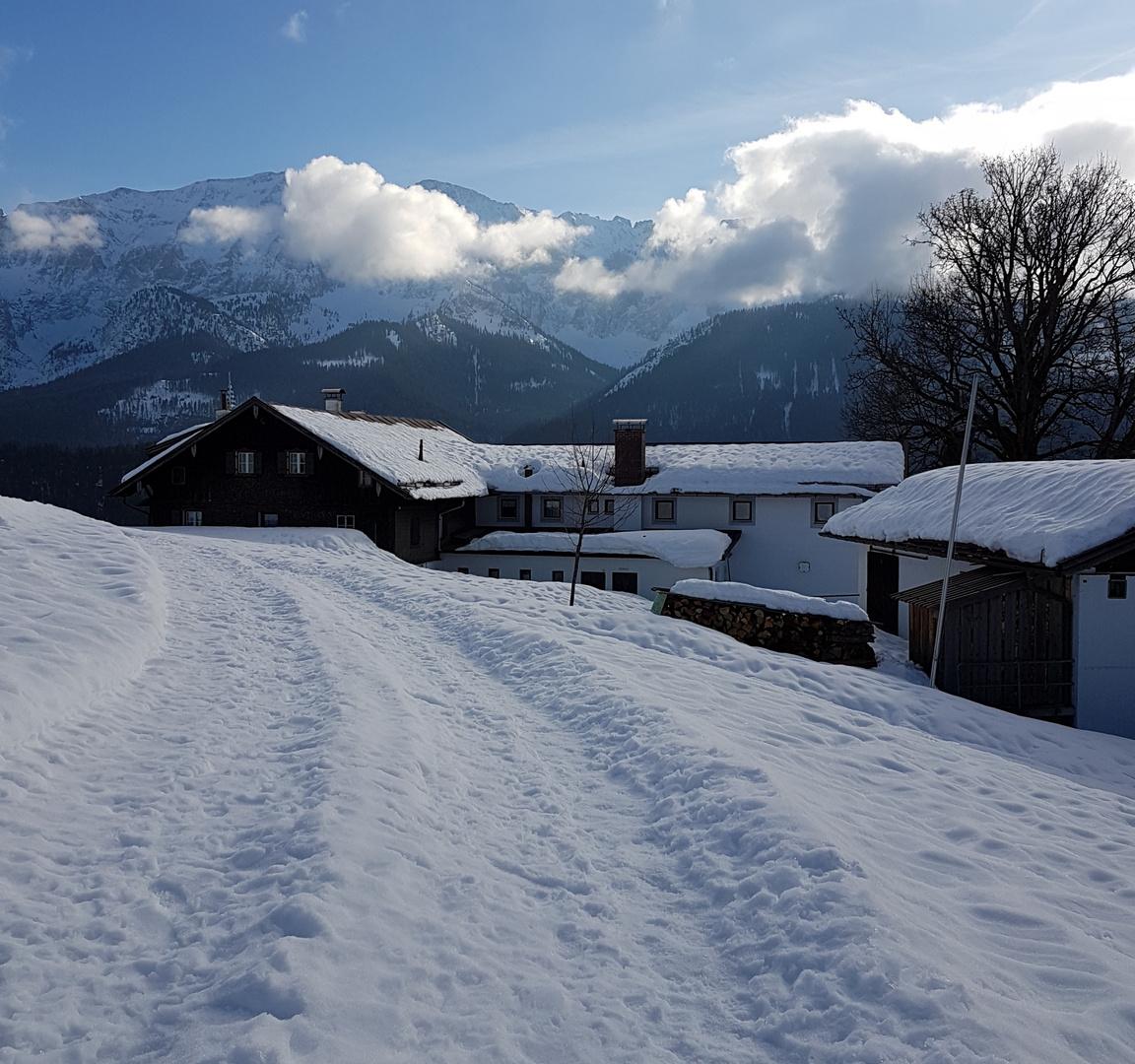 Altschnee