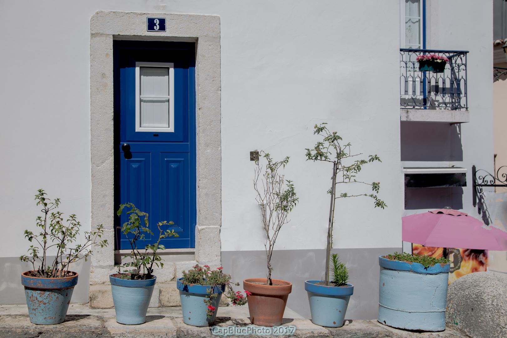 Altstadt Alfama Haus mit Topfpflanzen als Vorgarten