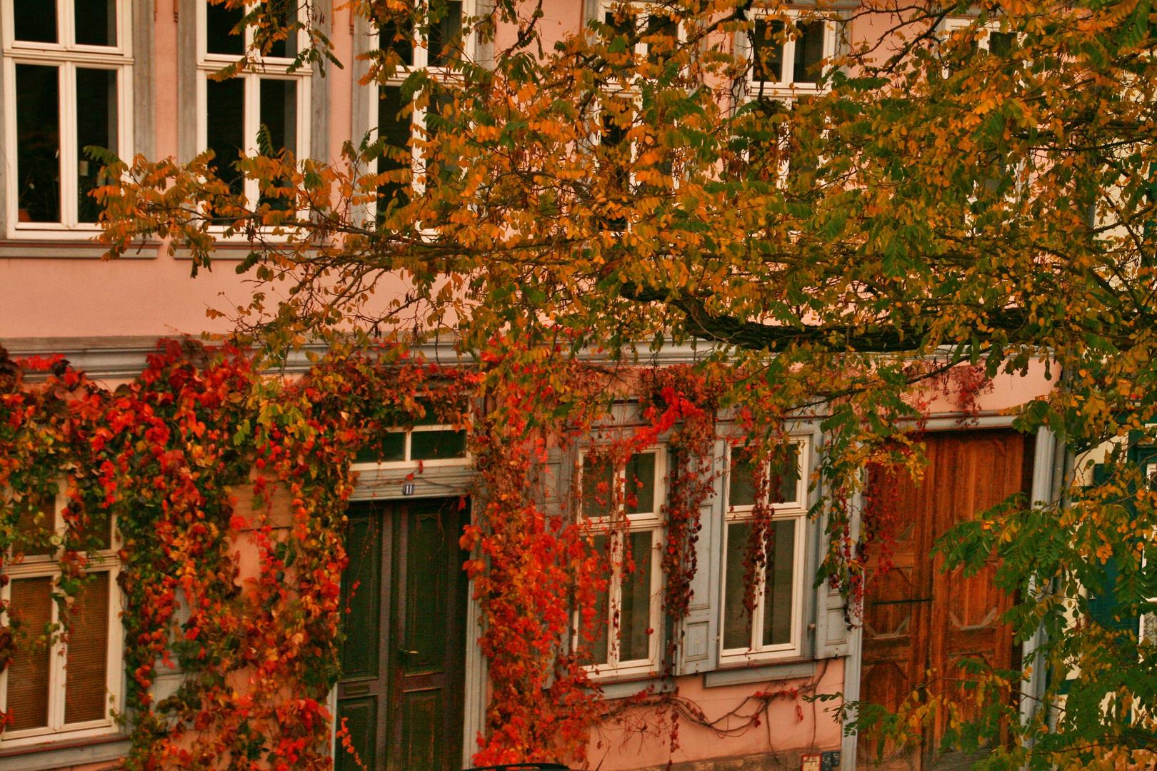 Altstadt im Detail