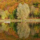 Am 22. September 2017, ist Herbstanfang!