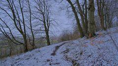 am 26.2.20 gab es etwas Schnee (el 26.2.20 había un poco de nieve)
