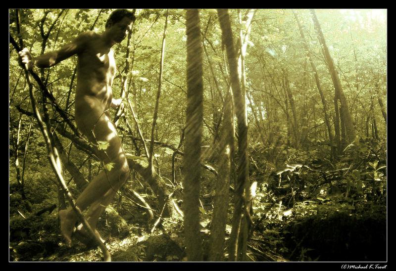 am Anfang umgab uns Wald