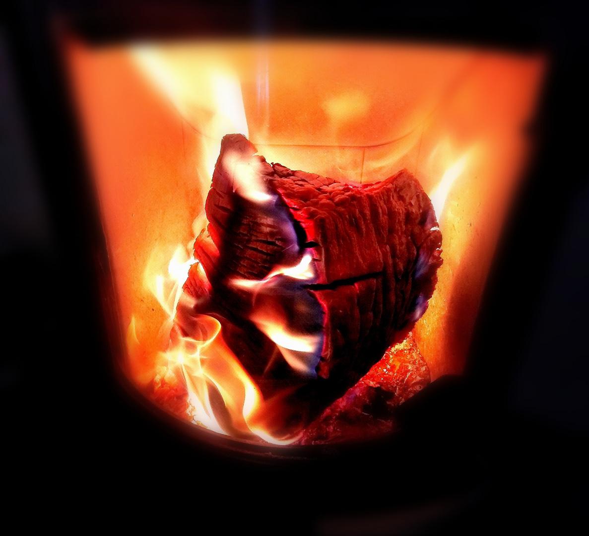 Am Anfang war das Feuer Foto & Bild | monatswettbewerbe ...