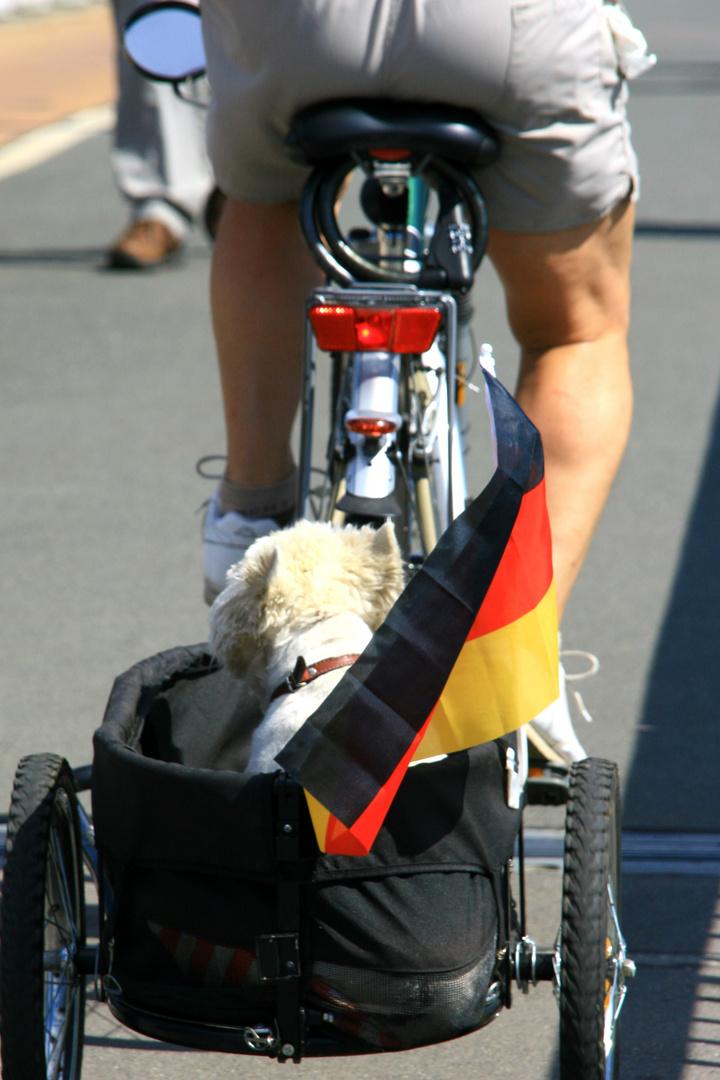 deutsche arsch