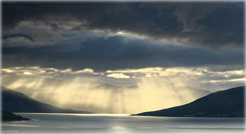 am Balsfjord (6)