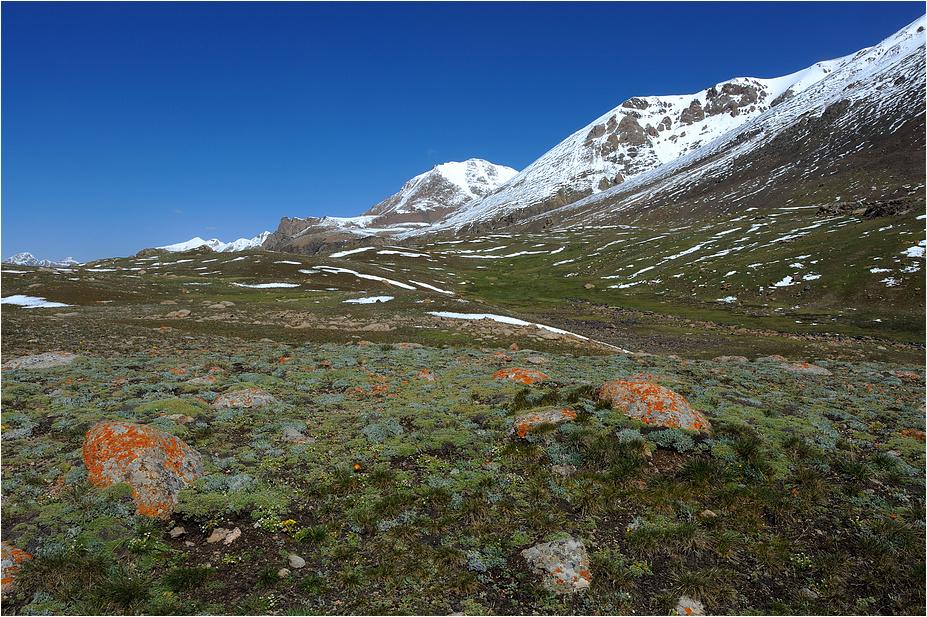 Am Barskoon Pass
