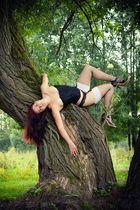 am Baum Hängen!