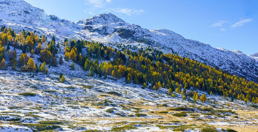 Am Berninapass_Herbst