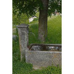 Am Brunnen vor dem Tore .....