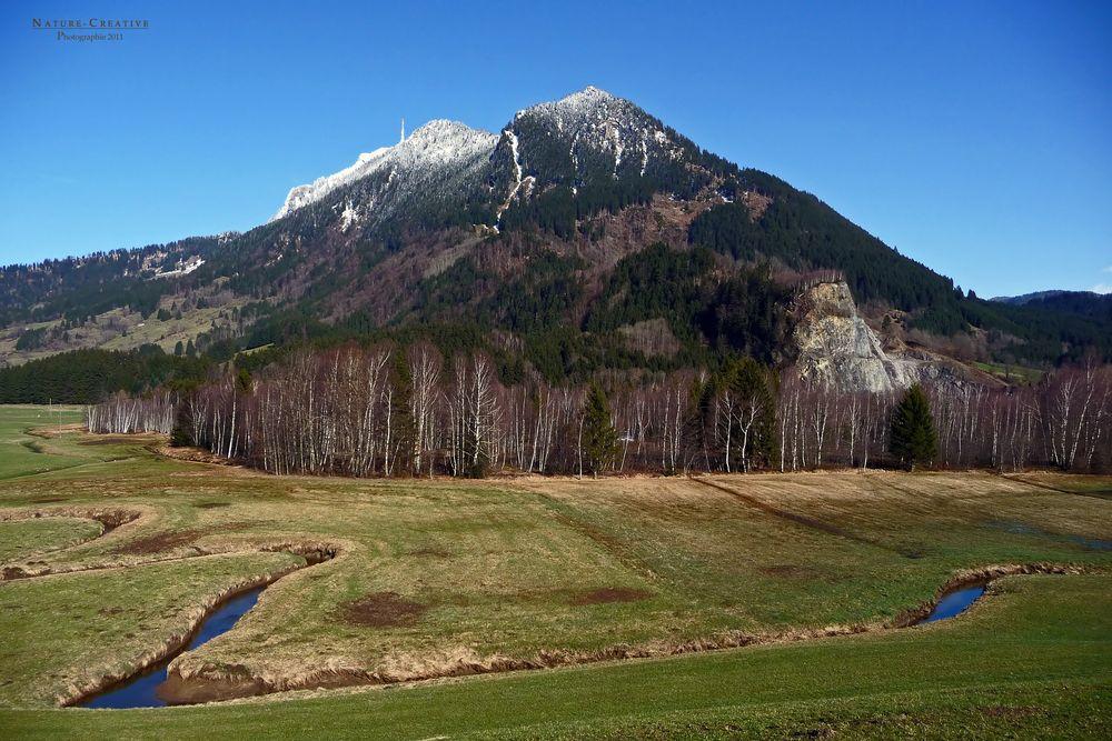 """""""Am Burgberger Moor mit Blick auf den Grünten und Moor-Wäldchen"""""""