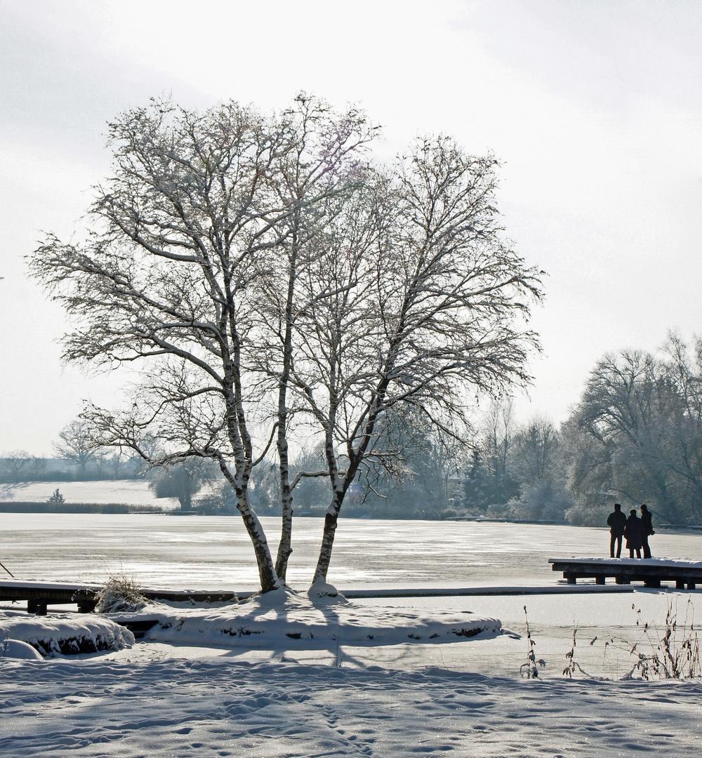 Am Dietlhofer See
