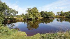 Am dlouhy ryb in Cinovec  (langem Fisch im böhmischen Teil von Zinnwald) war...