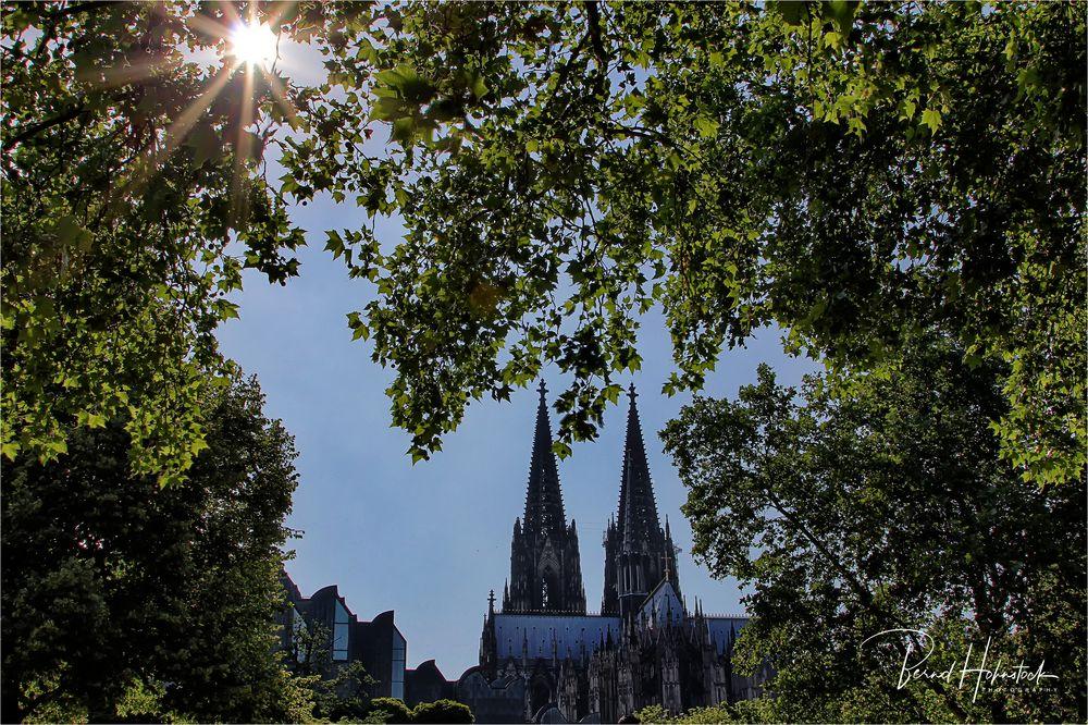 am Dom zu Köln ....