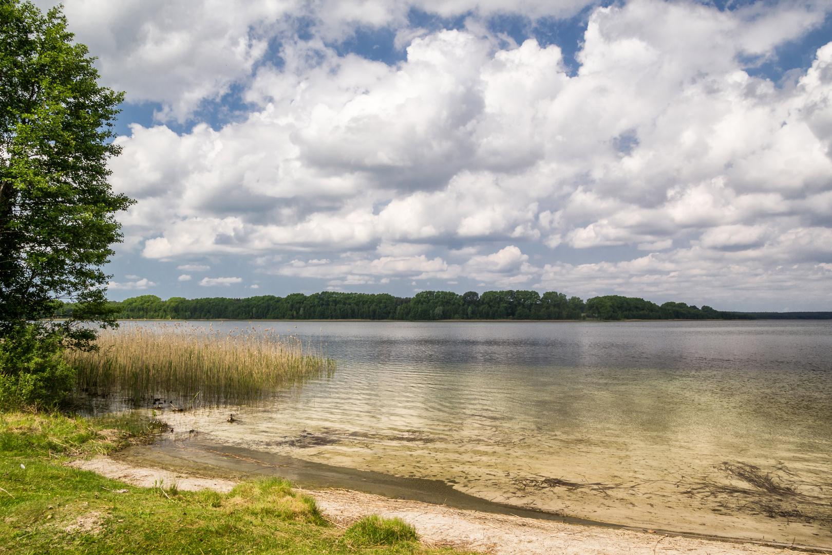 Am Drewitzer See