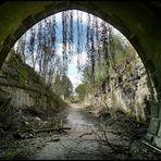 Am Ende des....Tunnelblick