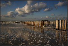 Am Ende eines langen Strandspazierganges ...
