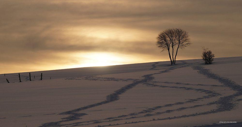 Am Ende eines schönen Wintertages