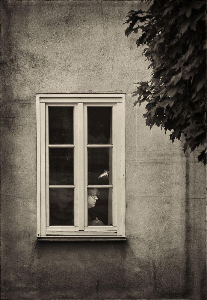 Am Fenster oder: Der sehnsuchtsvolle Blick der Teekanne