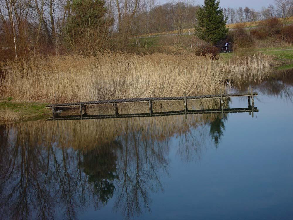Am Fischersee in Schwarzach
