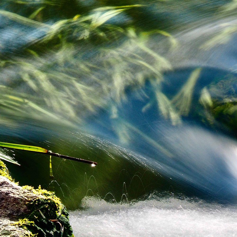 Am Fluss...