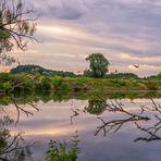 Am Fluss1 - Als mir sieben Wildgänse ins Bild flogen (alle mit Spiegelung)