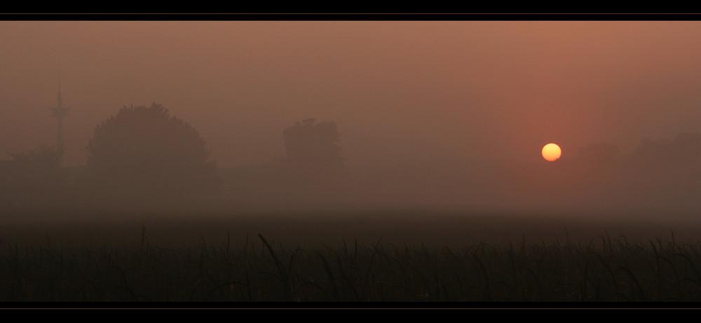 Am frühen Morgen...