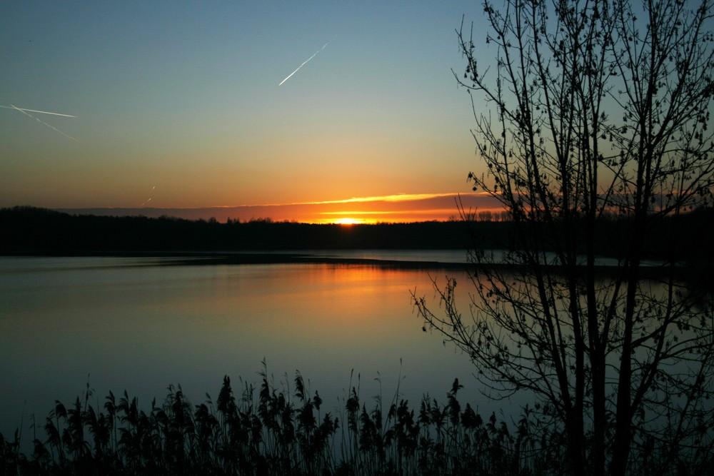 Am frühen Morgen am Naturschutzsee.