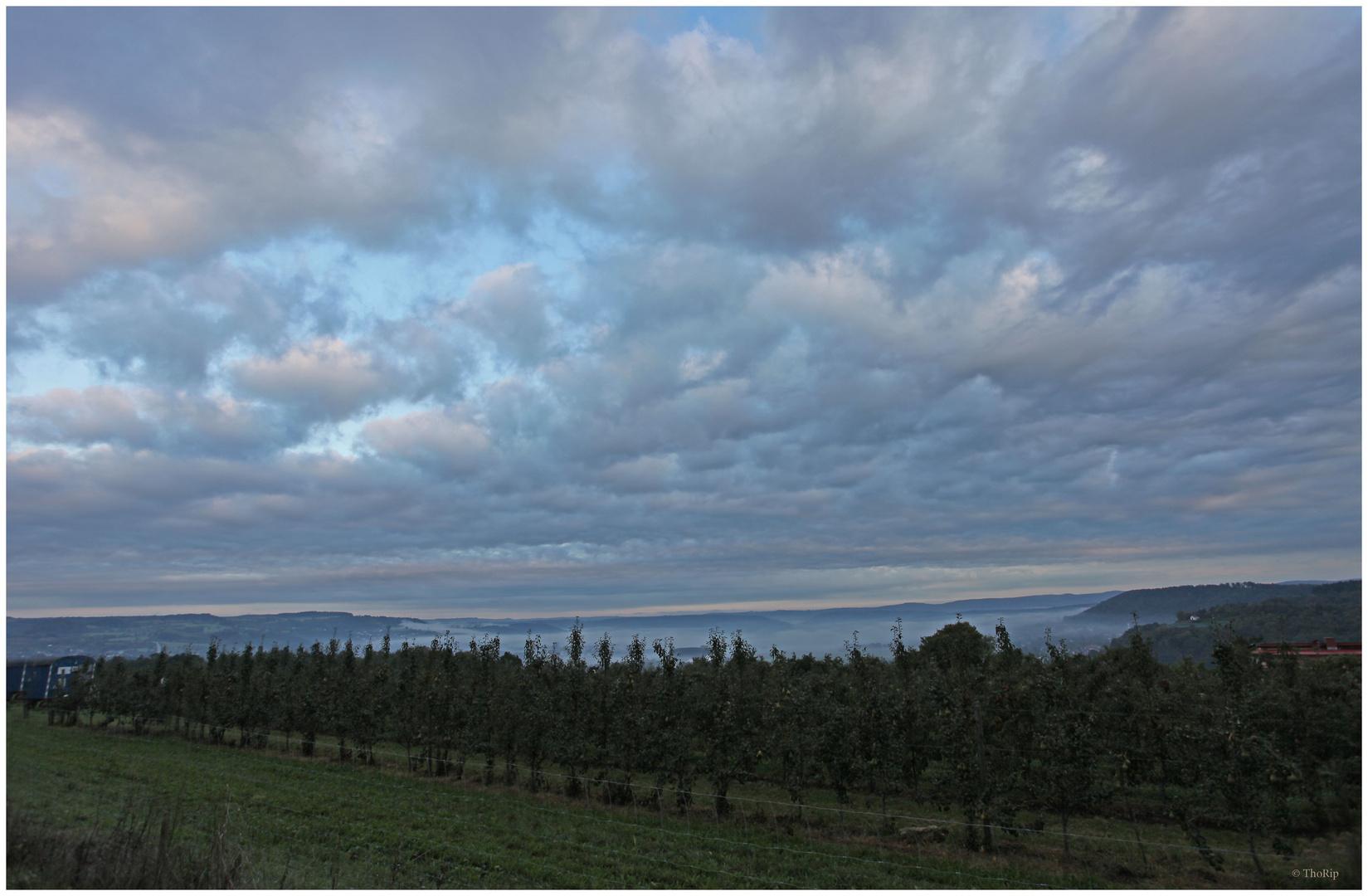 Am frühen Morgen sah es noch gut aus...