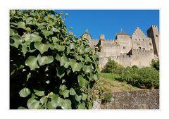 Am Fuße von Carcassonne