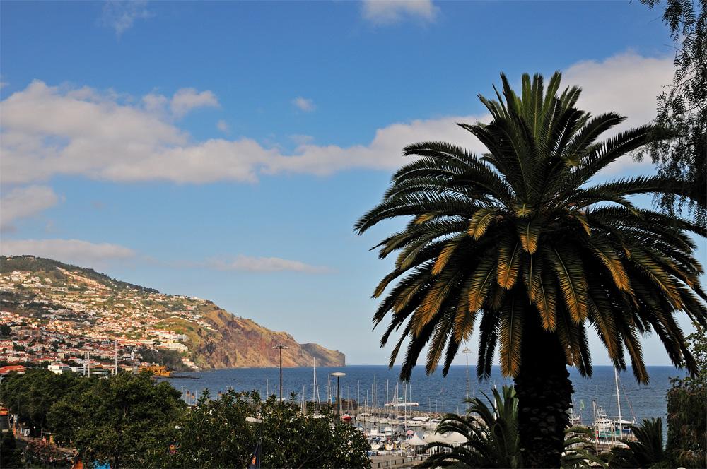 Am Hafen von Funchal