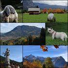 am Hausberg über Garmisch Partenkirchen