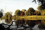 Am herbstlichen schönen Mulde-Ufer im Umland von Dessau-Rosslau