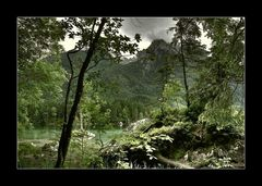 Am Hintersee bei Ramsau / Im Zauberwald