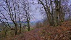 """am Hutsberg (la montaña """"Hutsberg"""")"""