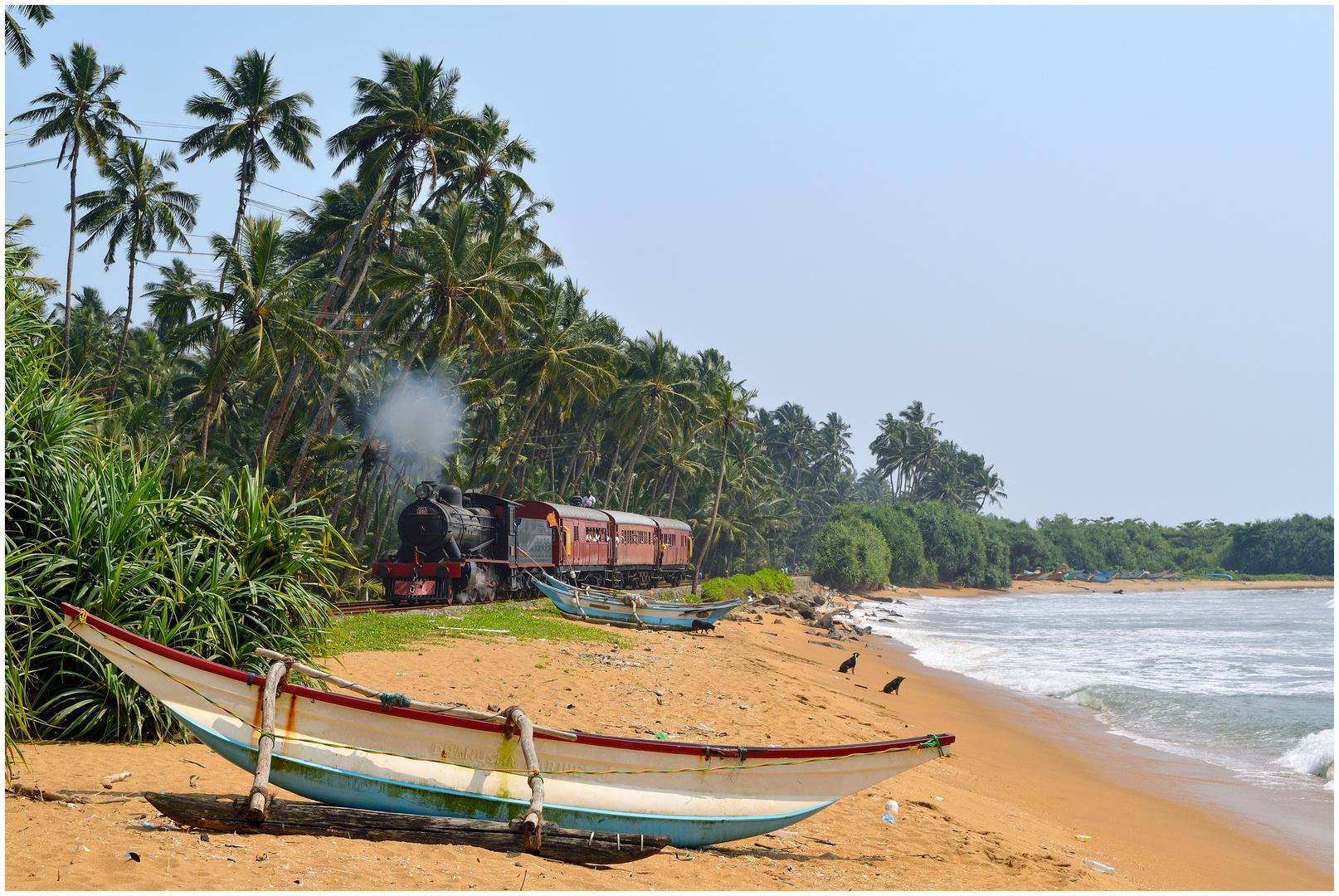 Am Indischen Ozean XII