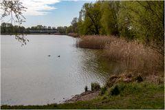Am Kaulsdorfer See (02)
