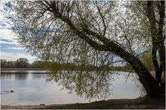 Am Kaulsdorfer See (03)