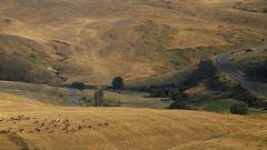 Am kleinen Kaukasus in Armenien