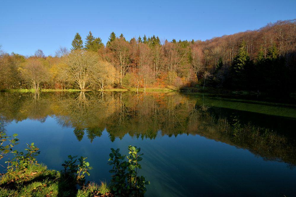 am kleinen Teich