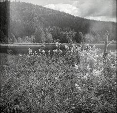 am Lac de Lispach