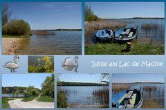 am Lac de Madine-37