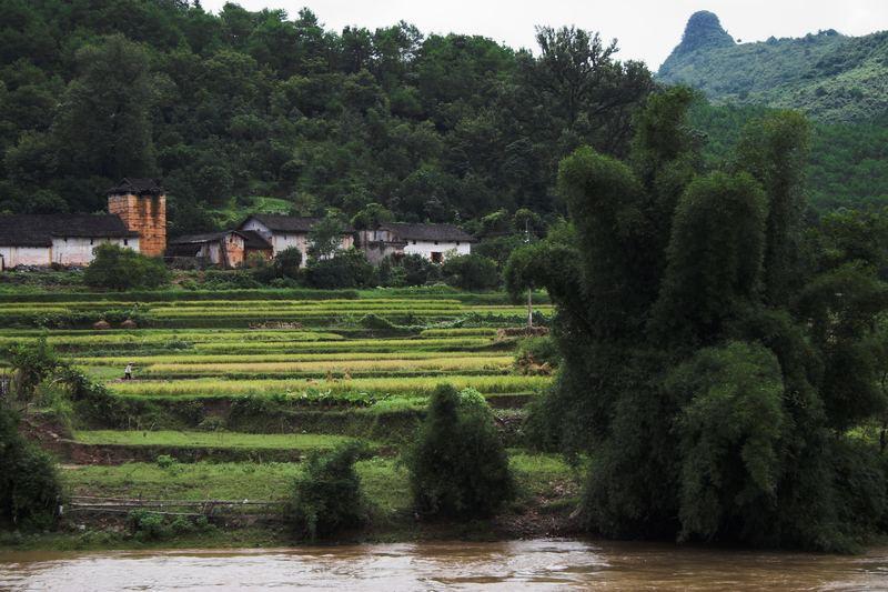 Am Li River