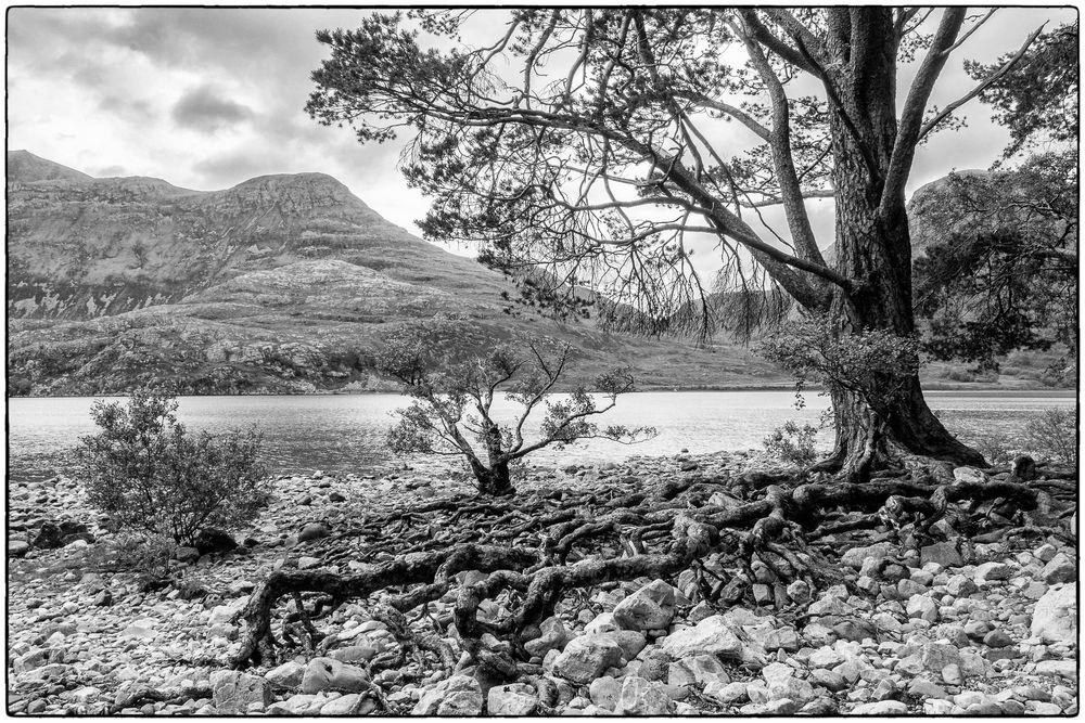 Am Loch Maree